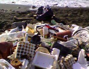rifiuti mare d'inverno