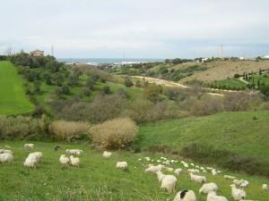 valle fiumaretta