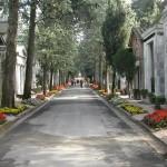 main_504764_cimitero_viale