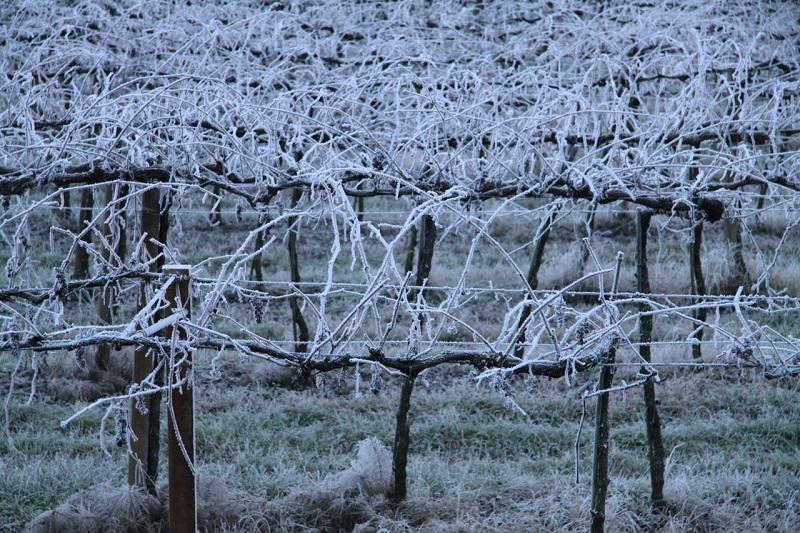 Ancora gelo e deboli nevicate nella Tuscia