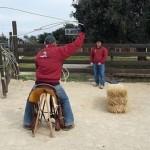 team roping2