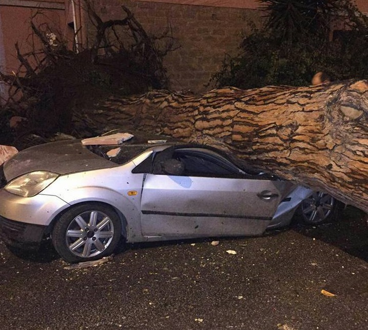 MALTEMPO OGGI / due morti, danni e feriti fra Ladispoli e Cesano