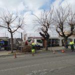 alberi potature2